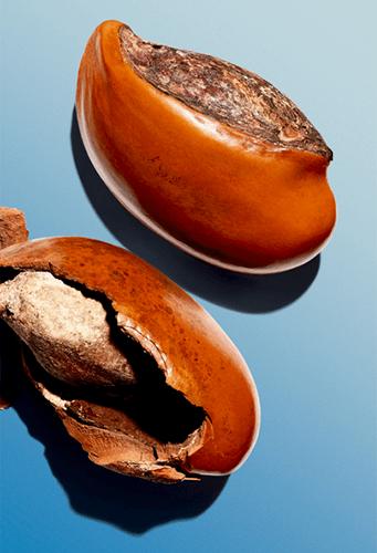 Ingrediente karité