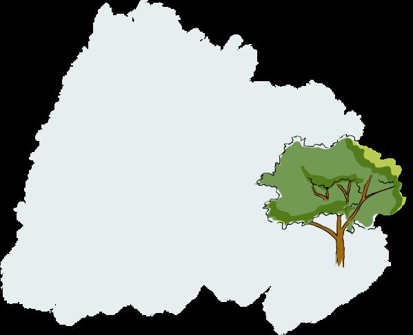 Ilustración de un árbol Bálsamo Superhidratante para el Cuerpo