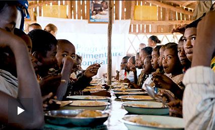 FEED Y CLARINS, proyecto en Madagascar