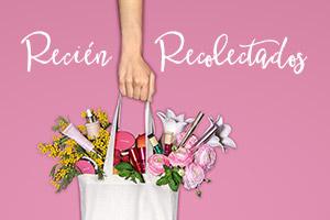 Clarins Beauty Market