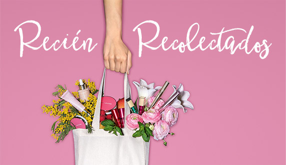 ¡Clarins Beauty Market!